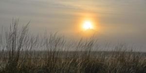 Nebel am Desenberg