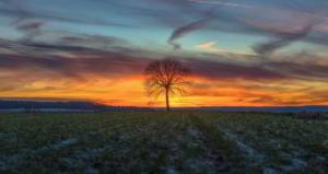 Sonnenuntergang im Januar