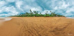 Sri-lanka-Hikkaduwa Beach