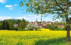 Warburg im Frühling