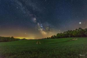 Milchstraße über dem Feld